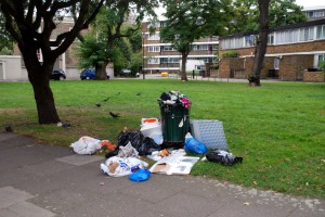 Fly-tipping on Claylands Green