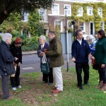 Claylands Green Action Day 01
