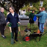 Claylands Green Action Day 03