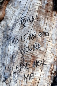 Graffiti on tree on St Marks Churchyard